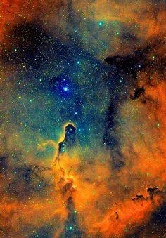 Elephant Trunk Nebula #space #universe Muse Malady www.musemalady.com