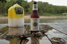 Cisco Summer of Lager - Summer Beer @Cisco Brewers