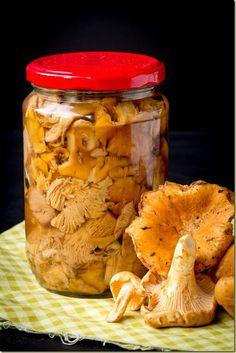 Три дореволюционных рецепта засолки грибов   Golbis