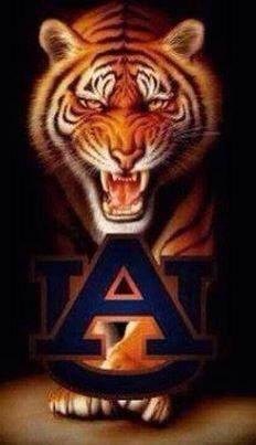 I believe in Auburn University and I love it. Football War, Auburn Football, Auburn Tigers, Auburn Vs, Football Season, College Football, Lsu, Auburn Alabama, Bird Barn
