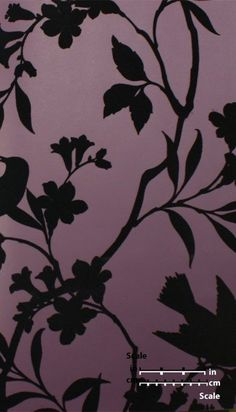 Sample Birds in Trees Velvet Flocked Wallpaper in Plum and Black from the Plush Collection by Burke Decor Plum Wallpaper, Flock Wallpaper, Velvet Wallpaper, Black Background Wallpaper, Luxury Wallpaper, Modern Wallpaper, Wallpaper Samples, Purple And Gold Wallpaper, Macbook Wallpaper