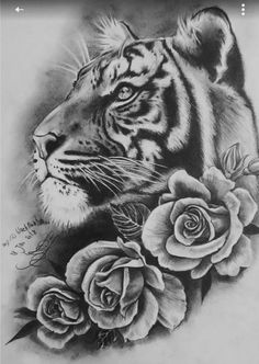 Nice Grey Ink Tiger Head Tattoo Tattoo Uploaded By Alyona Tiger Tattoo Design Tigertattoo 30 Tremendous Black And Grey Tattoos 75 Traditional Tiger Tattoo Designs For Men Striped Ink Ideas Tiger Head Tattoo, Tiger Tattoo Design, Head Tattoos, Rose Tattoos, Body Art Tattoos, Sleeve Tattoos, Tiger Tattoo Thigh, Tiger Tattoo Sleeve, Tattoo Art