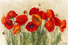 Carol Rowan - Vibrant Poppies