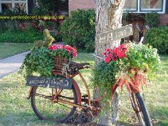 Old bike :)