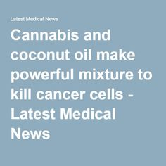 Cannabis and coconut oil make powerful mixture to kill cancer cells - Latest Medical News