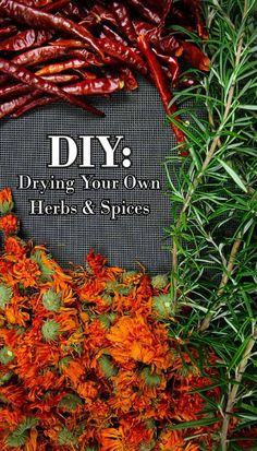 Summer herb gardens are bursting with flowering medicinals ad culinary herbs.  Here's a short-and-sweet tutorial on drying your own homegrown herbs.
