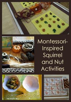 Montessori Monday – Montessori-Inspired Squirrel and Nut Activities