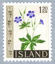 ◇Island  1960