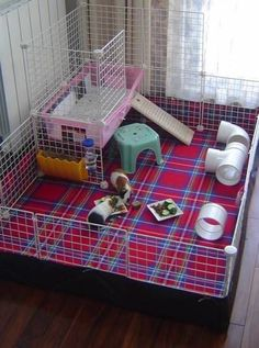 c&C hedgehog cage
