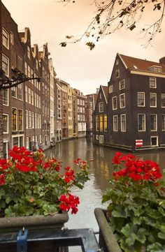 Enjoy your vacation in Holland and Belgium on a Rick Steves tour! You'll experience Amsterdam, Bruges, and more! Amsterdam Trip, Amsterdam Canals, Places Around The World, Travel Around The World, Around The Worlds, Wonderful Places, Beautiful Places, Places To Travel, Places To Visit