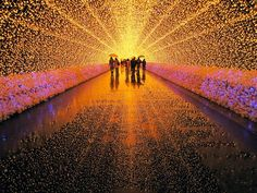 Festival of LED lights, Winter Illuminations at Nabana no Sato, a botanical garden on the island of Nagashima in Japan. With this year's theme being nature, the highlight is an incredible tunnel of light with tens of thousands of LED lights. Nabana No Sato, Oh The Places You'll Go, Places To Visit, Led Shop, Winter Light Festival, Light Tunnel, Monte Fuji, World Festival, Voyager Loin