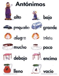 sinónimos y antónimos para primaria - Buscar con Google