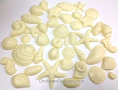 White Chocolate Seashells, Decoration Package for Special Occasion Cakes Cooler Pack Is INCLUDED in the Cost of Product for Warm Weather Shipping Chocolate Shells, White Chocolate, Seashell Chocolates, Beach Baby Showers, Packing A Cooler, Thing 1, Edible Cake, Occasion Cakes, Delicious Chocolate