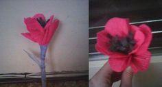 diy tulip