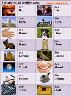 Learn to speak German with these basic and advanced grammar and vocabulary lessons, quizzes, study tips, and articles about German culture.