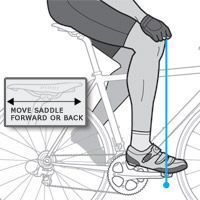 Bike Fit: Set Your Bicycle Saddle Height   Bicycling Magazine - Maximize your power output
