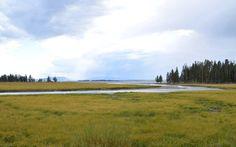 Yellowstone, Wyoming | Road Trip | TRNK