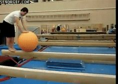 Check out all the awesome funny gifs on WiffleGif. Including all the laughing gifs, laugh gifs, and adorable gifs. Page 2 Funny Baby Images, Funny Dog Photos, Funny Pictures For Kids, Funny Dog Videos, Gifs Hilarious, 9gag Funny, Funny Laugh, Stupid Funny, Funny Humor