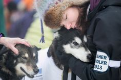 A musher handler for Ed Stielstra's team hugs one of the dogs before lining up for the ceremonial start to the Iditarod dog sled race in downtown Anchorage, Alaska March 2, 2013. REUTERS/Nathaniel Wilder