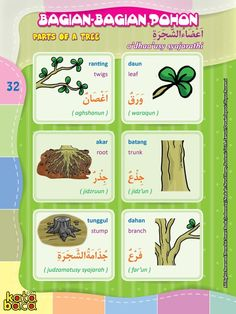 Baca Online Kamus Pintar Bergambar 3 Bahasa adalah buku kamus bergambar full warna dalam 3 bahasa: Indonesia, Inggris, dan Arab untuk anak. Arabic Language, English Language, Learning Arabic, Kids Learning, Arabic Lessons, Learning Colors, Arabic Words, Doa, Vocabulary