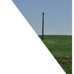 the pole   #triangleseries