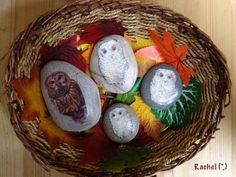 """Owl Babies Story Stones - from Rachel ("""",) Baby Owls, Owl Babies, Owl Who, Owl Feather, Nursery Activities, Baby Painting, Little Red Hen, Story Stones, Nocturnal Animals"""
