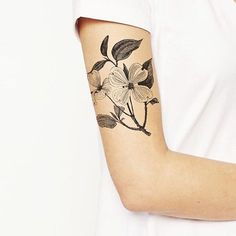 Dogwood Tree Tattoo Meanings Tree tattoos take a vital part among other tattoo designs. Dogwood or dog-tree is an unbelievably beautiful tree with tender four-petal flowers and dark red berries … 3 Dot Tattoo Meaning, Tattoos With Meaning, Dogwood Flower Tattoos, Dogwood Flowers, Tattoo Designs And Meanings, Flower Tattoo Designs, Tattoo Meanings, Arm Sleeve Tattoos, Arm Tattoo