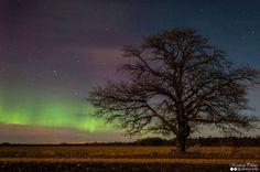Virmalised 03.01.15 - Aurora Borealis 03.01.15