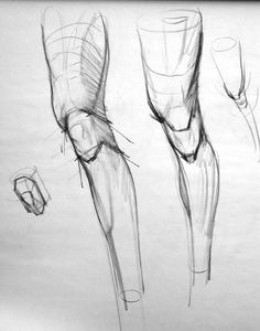 "Figure Drawing Tutorial Anatomy Studies Demo: ""Figure Studies"" - Page 2 Figure Drawing Tutorial, Human Figure Drawing, Figure Sketching, Figure Drawing Reference, Anatomy Reference, Drawing Tutorials, Leg Anatomy, Anatomy Art, Anatomy Drawing"