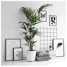 DIY Tumblr Room Decor — jessica154blog:   Via*** desenio  ***
