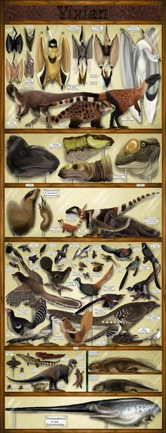 Yixian Formation Exhibit by KakureRyoshiX on DeviantArt