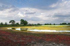 Озеро Беленькое. Россия, Алтайский край, Угловский район