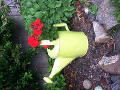 Old watering can painted Key Lime ...Adorable!