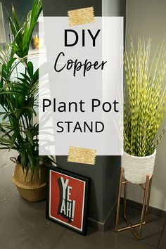 How to Make a DIY Copper Plant Stand is part of Home Accessories Ideas DIY - DIY copper plant stand Make your own plant pot holder with my step by step tutorial plus pictures to create a bespoke planter using copper pipe & fittings Potted Plants, Indoor Plants, Indoor Outdoor, Copper Pipe Fittings, Diy Home Accessories, Diy Plant Stand, Plant Stands, Upcycled Crafts, Trendy Home
