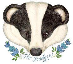 The Mitten - The badger mask for The Hat by Jan Brett Illustrations, Book Illustration, Forest Animals, Woodland Animals, Feliz Halloween, Hedgehog Pet, Jan Brett, Nocturnal Animals, Honey Badger