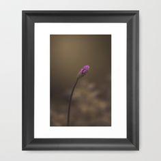 Purple Bud Framed Art Print by Destinie Bruno  - $33.00
