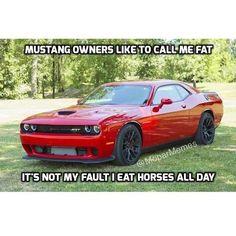 Mopar, Call Me, Mustang, Horses, Vehicles, Mustangs, Mustang Cars, Car, Horse