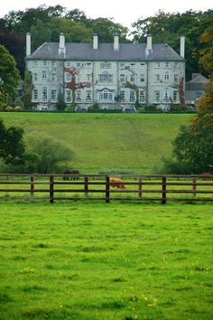 the vast face of Mount Juliet, a country house turned hotel in Co. Kilkenny