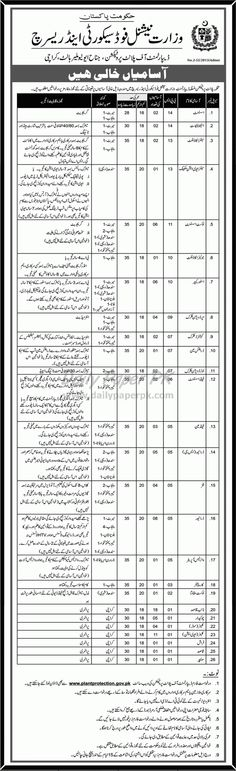 Department of Plant Protection, Ministry of National Food Security and Research Karachi has Situations Vacant For #jobs detail and how to apply: #paperpk http://www.dailypaperpk.com/jobs/229506/department-plant-protection-ministry-national-food-security-research-karachi-has-situations-vacant