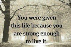 Okay I am strong, but a little bit easier please...