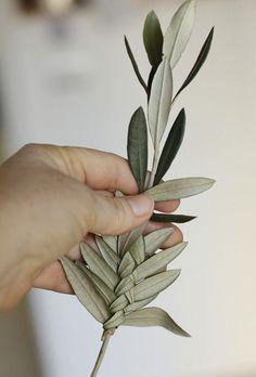 Corso di intreccio di rami di ulivo per le Palme: