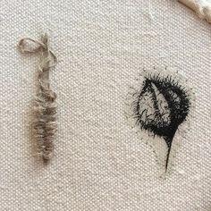 Semilla  #estudiogimenaromero #fotobordado #bordado #embroidery #broderie
