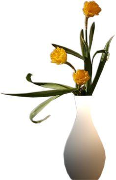 Png Wazony Kwiaty | Programy,generatory,ramki foto,gify,obrazki,linki...