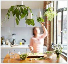 Chic hanging indoor herb garden