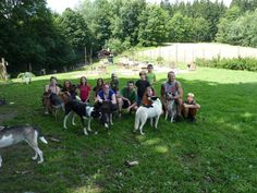 Kids Camps/Letni Tabory pro Deti - HuskyTours.cz Camping With Kids, Camps, Dolores Park, Summer, Travel, Summer Time, Viajes, Summer Recipes, Trips