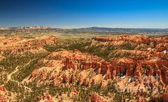 Springtime In Bryce: See more images at http://robert-bales.artistwebsites.com/