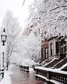 Uploaded by b l x x m i n g. Find images and videos about beautiful, white and winter on We Heart It - the app to get lost in what you love. Winter Magic, Winter Snow, Winter Scenery, Snow Scenes, Winter Pictures, Winter Beauty, Winter Photography, Belle Photo, Paris France