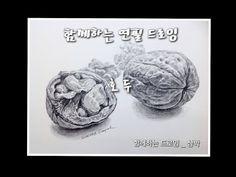 함께하는 드로잉 _ Together drawing _ 연필 드로잉 _ pencil drawing _ 호두 _ walnut _ Siampark - YouTube