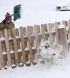 Denver Snow Storm  Picture found on channel 2 news photo gallery. I think its pretty cool.