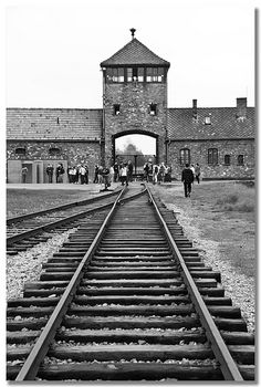 The road to Auschwitz. This is what the Jews had to see before they entered 'hell'.